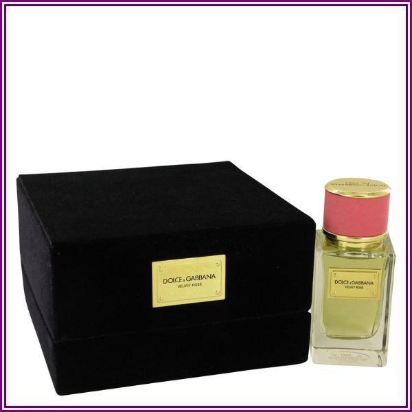 Dolce & Gabbana Velvet Rose Eau De Parfum Spray 50ml/1.6oz from FragranceX.com