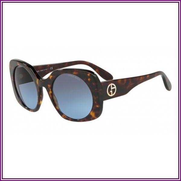 AR 8110 Sunglasses, Dark Havana from VISUAL CLICK